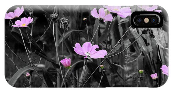 Tall Pink Poppies IPhone Case