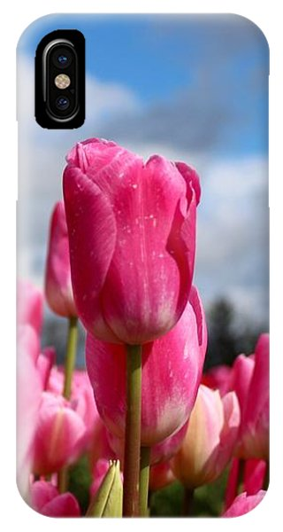 Tall Standing Tulip IPhone Case