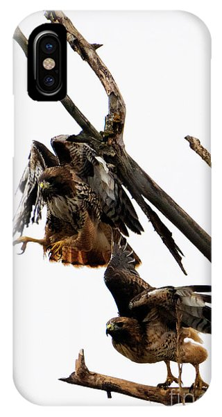 Red Tail Hawk iPhone Case - Tandem Take-off by Mike Dawson