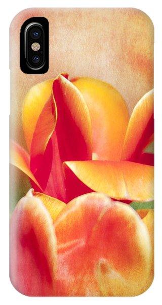 Tangerine Tulip Sorbet IPhone Case