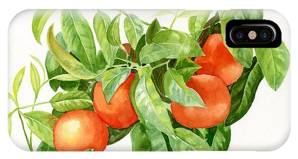 Tangerines With Leaves IPhone Case