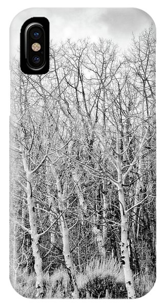 Tangled Trees No. 3-1 IPhone Case