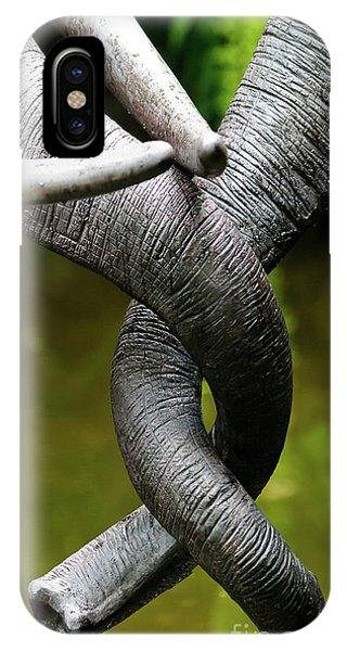 IPhone Case featuring the photograph Tangled Trunks by Ray Shiu