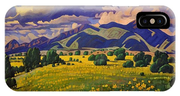 Taos Fields Of Yellow IPhone Case