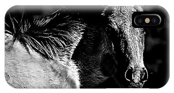 Taos Pony In B-w IPhone Case