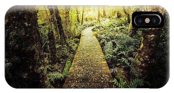Hiking Path iPhone Case - Tarkine Tasmania Trails by Jorgo Photography - Wall Art Gallery
