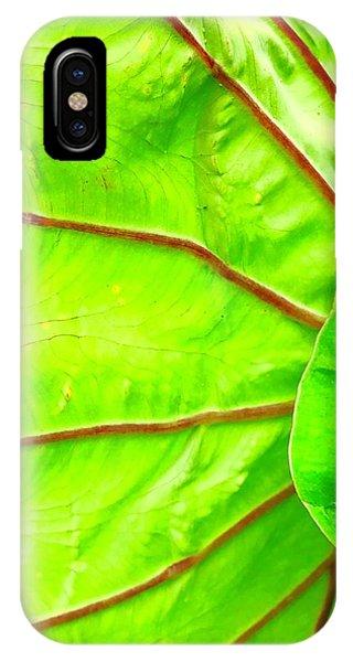 Taro Leaf Close Up In Green IPhone Case