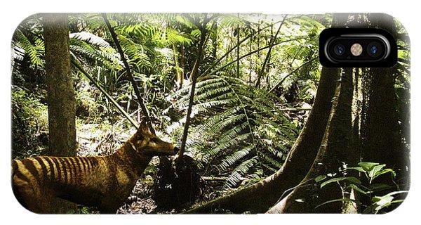 Tasmanian Wolf In Forest Phone Case by Christian Darkin