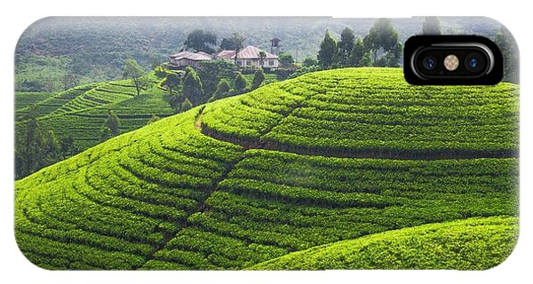 Hills iPhone Case - Tea Plantation by Emma Brown