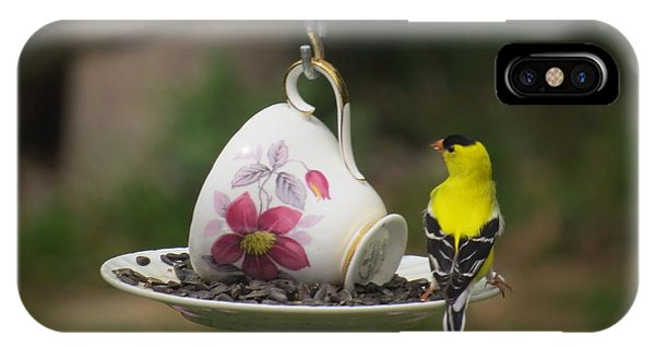 Teacup Finch IPhone Case