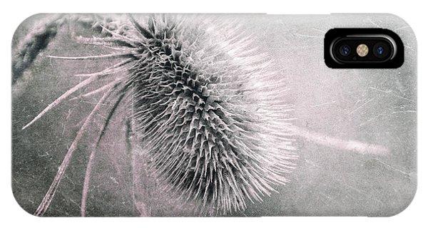 Plant iPhone Case - Teazel Weed by Tom Mc Nemar