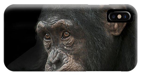 Chimpanzee iPhone Case - Tedium by Paul Neville