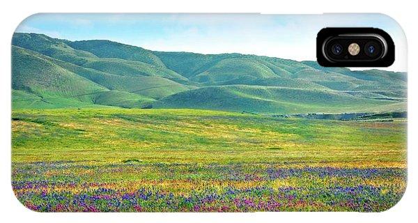 Tejon Ranch Wildflowers IPhone Case
