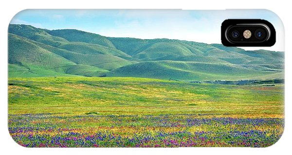 Tejon Ranch Wildflowers IPhone Case