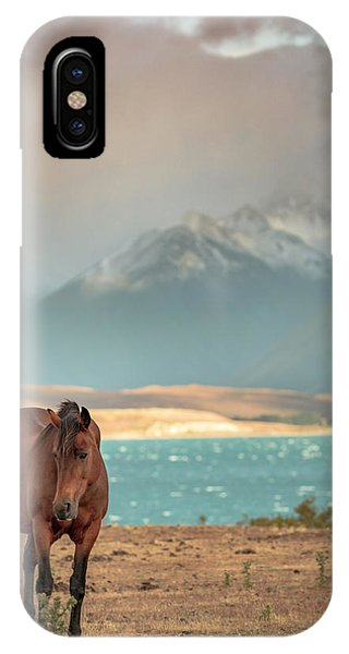 Tekapo Horse IPhone Case