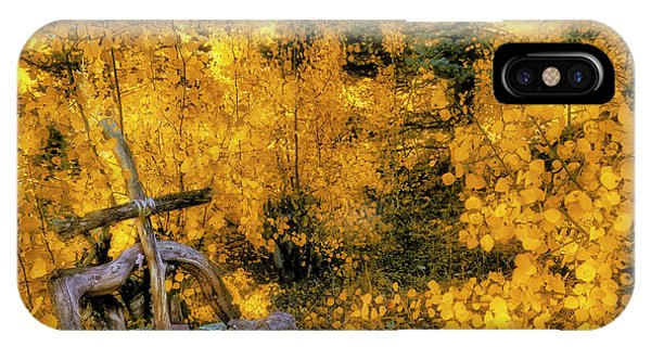 IPhone Case featuring the photograph Telluride Spirituality - Colorado - Autumn Aspens by Jason Politte