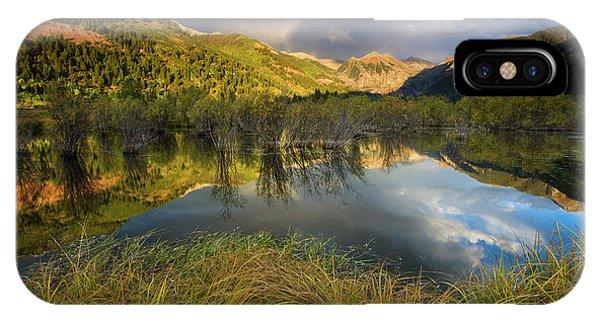 Telluride Valley Floor IPhone Case