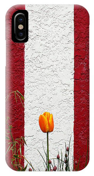 Temple Wall IPhone Case