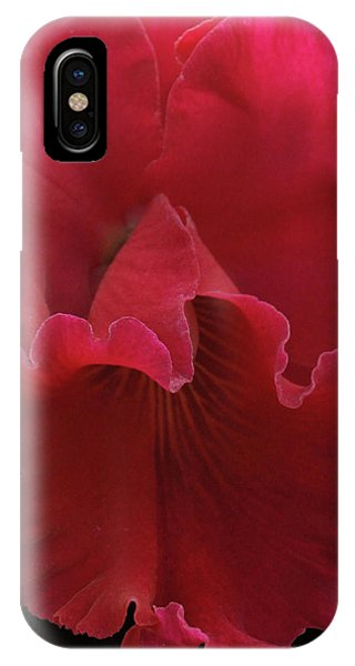 Tender Orchid IPhone Case