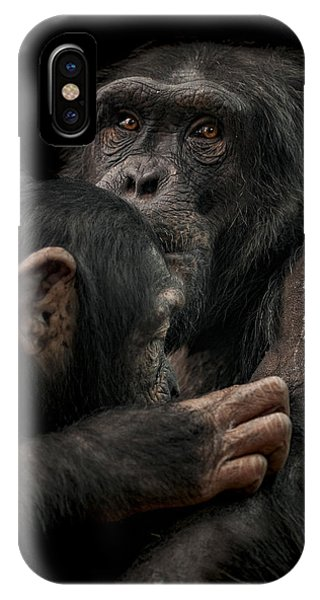 Chimpanzee iPhone Case - Tenderness by Paul Neville