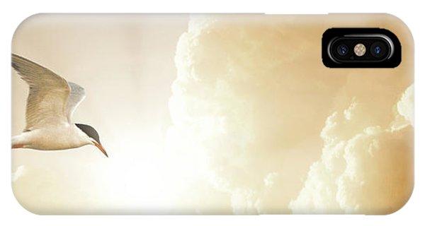 Tern In Flight, Spiritual Light Of Dusk IPhone Case