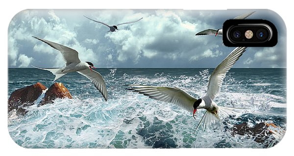 Terns In The Surf IPhone Case