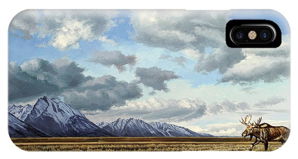 Teton iPhone Case - Tetons-moose by Paul Krapf