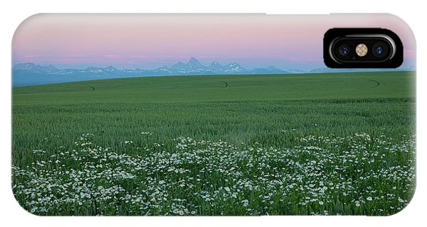 Tetons With Daisies IPhone Case