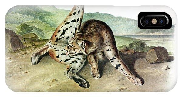 Lynx iPhone Case - Texan Lynx by John James Audubon