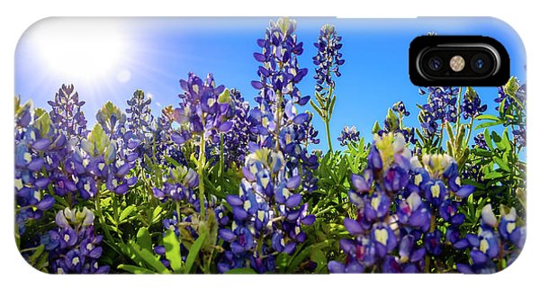 Texas Bluebonnets Backlit II IPhone Case