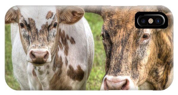 Longhorn Mother And Son IPhone Case