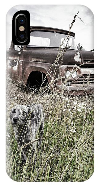 iPhone Case - Texas Roadside Dog by Chris Andruskiewicz