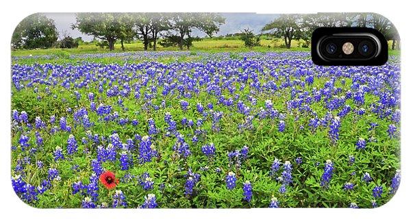 Texas Spring  IPhone Case