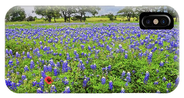 Texas Spring  IPhone Case