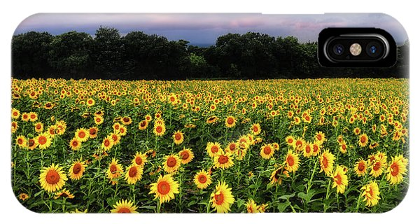 Texas Sunflowers IPhone Case