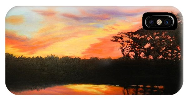 Texas Sunset Silhouette IPhone Case