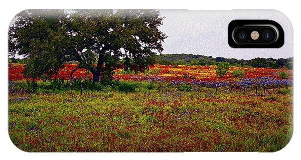 Texas Wildflowers IPhone Case
