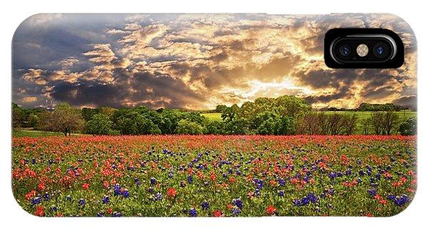 Texas Wildflowers Under Sunset Skies IPhone Case
