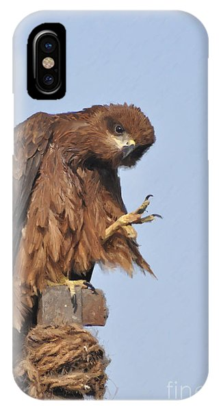 Thanks To All Nature Lovers  IPhone Case