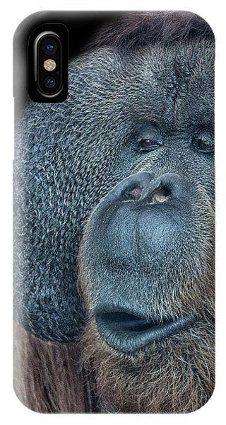 Orangutan iPhone Case - That Oooh Moment by Martin Newman