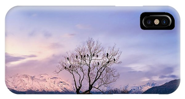 That Wanaka Tree IPhone Case