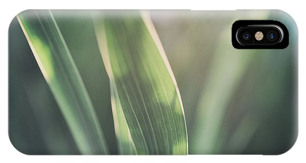 The Allotment Project - Sweetcorn Leaves IPhone Case