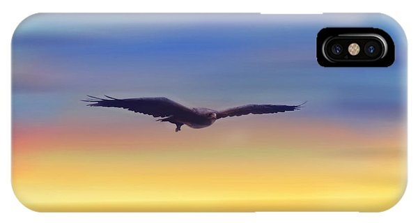The Art Of Flying IPhone Case