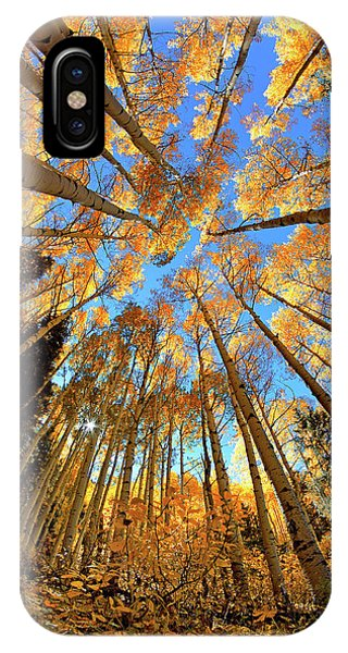 IPhone Case featuring the photograph The Aspens Above - Colorful Colorado - Fall by Jason Politte