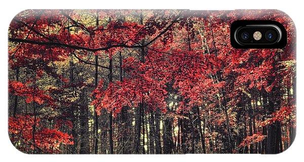The Autumn Colors IPhone Case