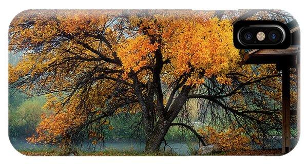 The Autumn Tree IPhone Case