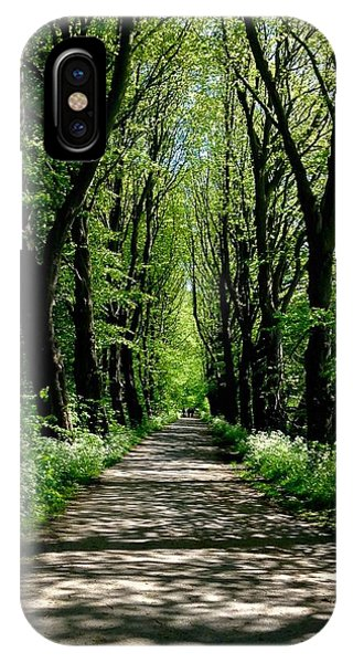 The Avenue Of Limes At Mill Park 3 IPhone Case