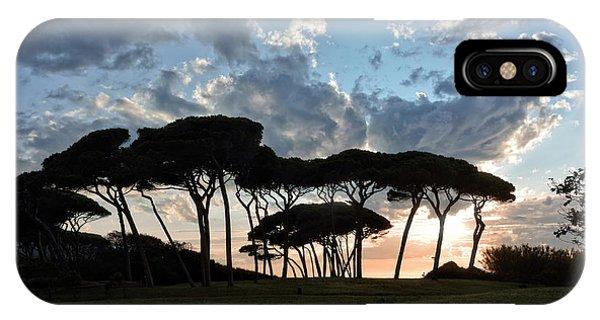 The Baratti Pine Trees IPhone Case