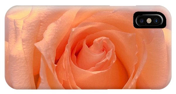The  Beauty Of A Rose  Copyright Mary Lee Parker 17,  IPhone Case