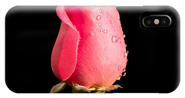 The Beauty Of A Rose IPhone Case